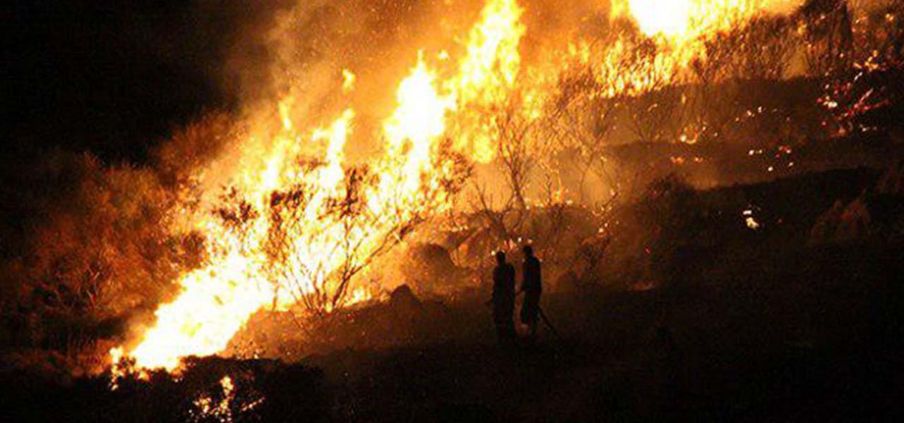 فريق الإطفاء التركي يخمد حريقا هائلا في ولاية بودروم