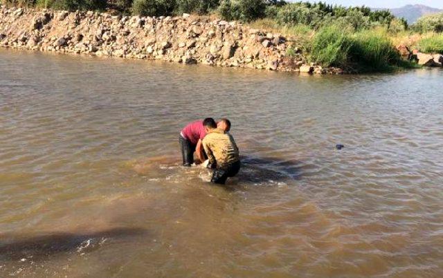 """حادثة مؤلمة.. وفاة لاجئ سوري وطفليه غرقاً في """"هاتاي"""""""
