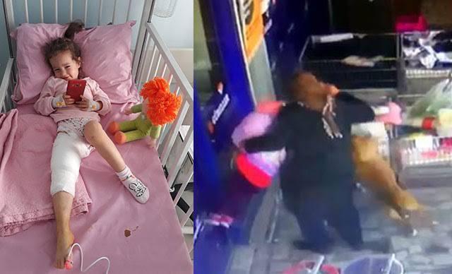 تدخل الجدة أنقذها.. كلب يهاجم طفلة في أنقرة ويتسبب لها بجروح (فيديو)