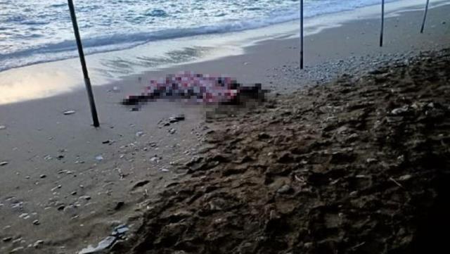 العثور على جثة لاجئ سوري قبالة سواحل موغلا