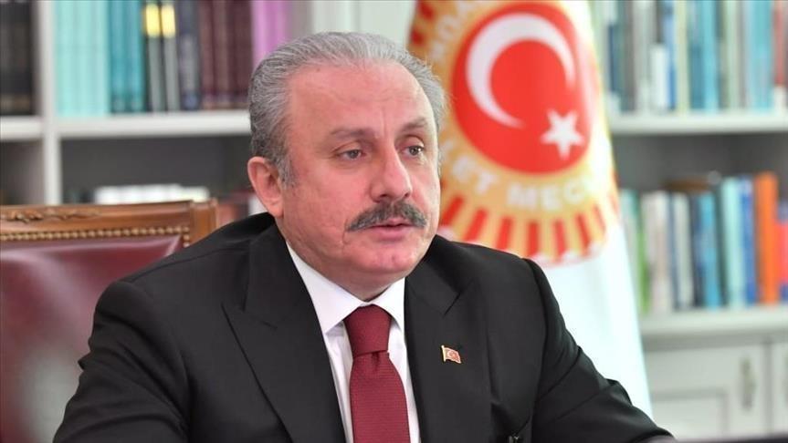 شنطوب: تركيا يمكنها دعم أصدقائها بالصناعات الدفاعية