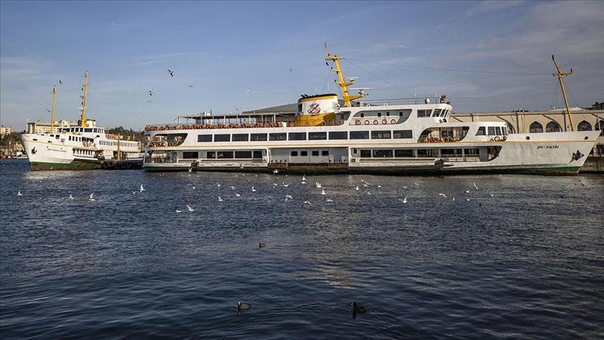 شتاء إسطنبول.. طيور مائية مهاجرة في مضيق البوسفور