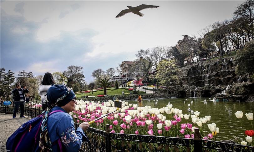 إسطنبول تتزين بالورود والتوليب مع حلول الربيع