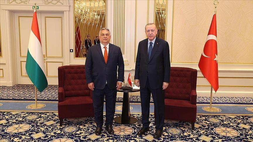 أردوغان يلتقي رئيس الوزراء المجري في بروكسل