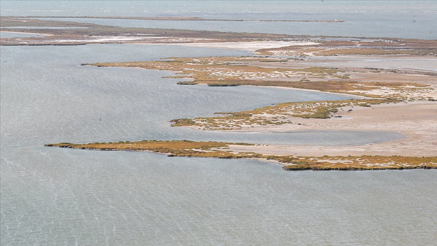 """تركيا.. بحيرة """"هوما"""" الشاطئية تتحول إلى محمية للطيور المائية"""