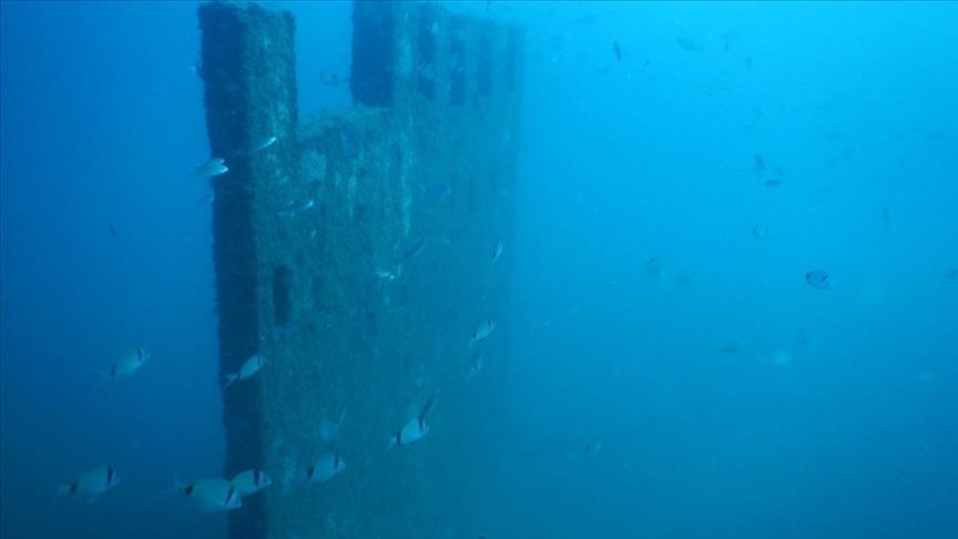 """أدرنة.. متحف """"إنيز"""" تحت البحر يغدو مستوطنة للأسماك"""