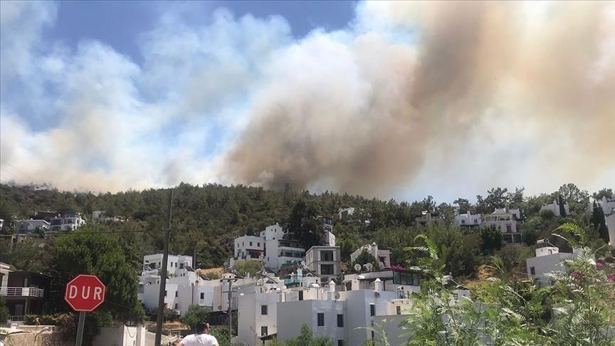 برًا وجوًا.. تواصل الجهود لإطفاء حرائق بودروم التركية